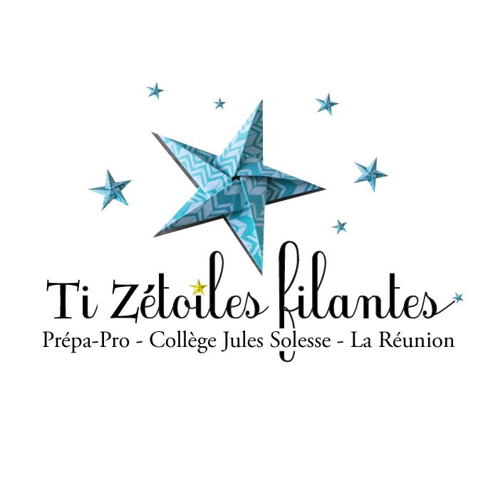 Le visuel de la mini entreprise Ti Zétoiles filantes